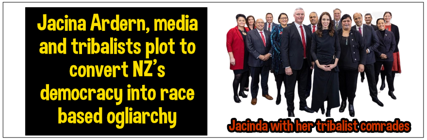 Mainstream media complicit in tribal takeover of New Zealand