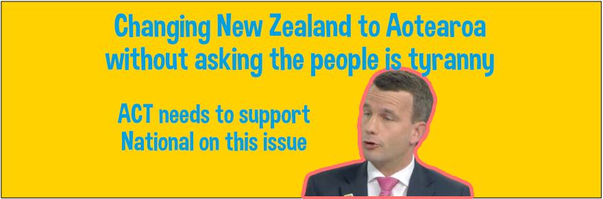 """ACT""""s David Seymour doesn't care about changing New Zealand to Aotearoa"""