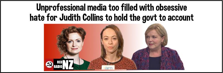 Judith Collins versus the fake media
